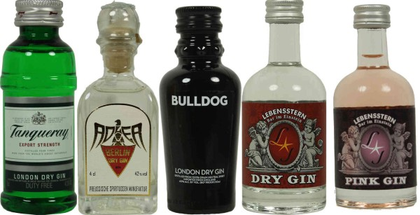 Gin Mini Set - The essential ones
