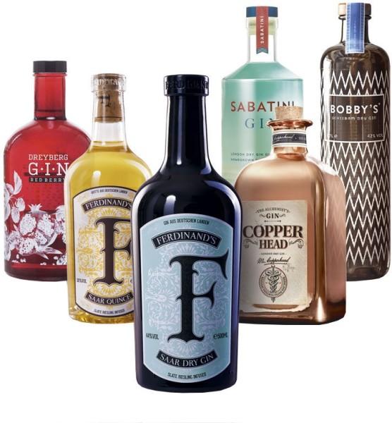 Gin Bundle 6 Flaschen 3,6 Liter