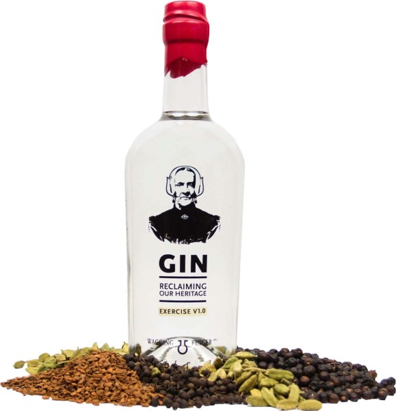 Wagging Finger Gin Experience 1.0 0,7l